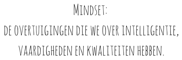 Wat is mindset?