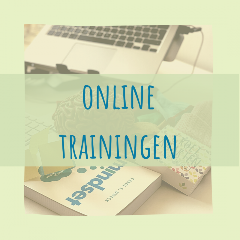 Online mindset trainingen